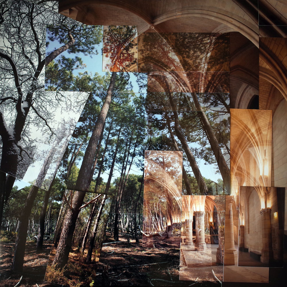 Voute forestiere - Em Pinsan - Collage